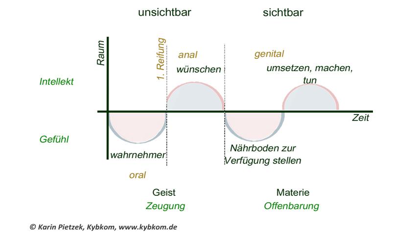 Etwicklungsphasen Im Männlichen Und Weiblichen Prinzip. Kybalion